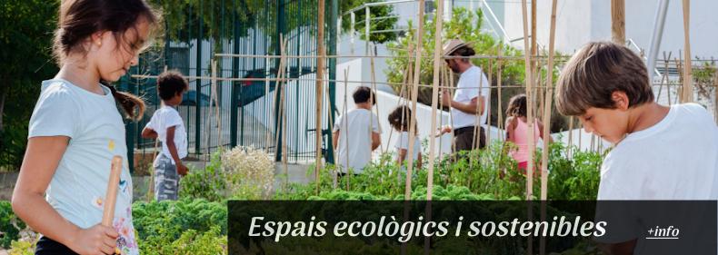 concienca ecologica banner slider copia